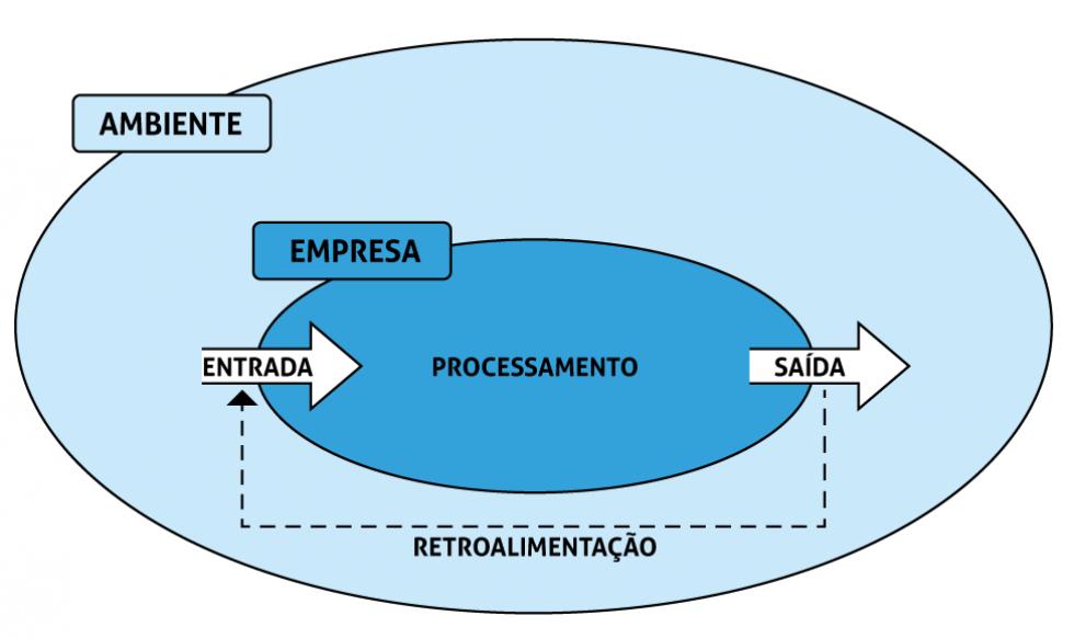 Capa da aula Teoria geral dos sistemas e as relações da empresa com o ambiente